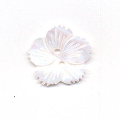 Knoop 20 mm bloem ivoor wit