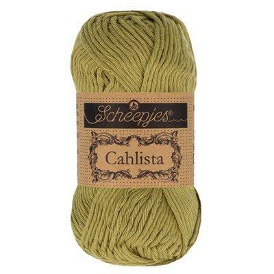 Scheepjes Cahlista 395 Willow