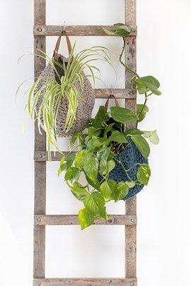 Haakpatroon handende mand voor planten, ....