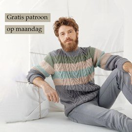 Gratis patroon - Breipatroon Herentrui